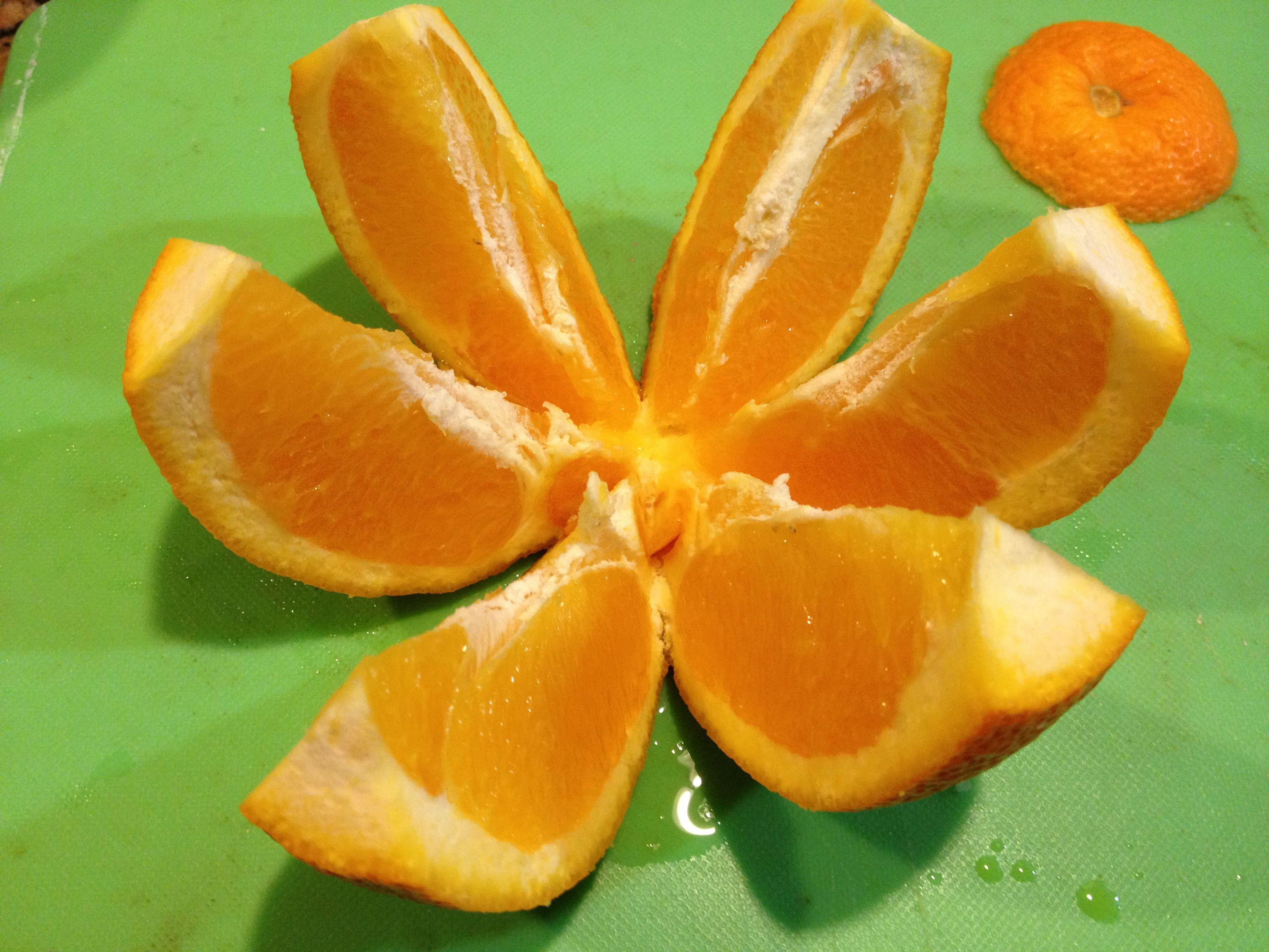 Image result for sliced orange