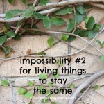 consider impossibility #2